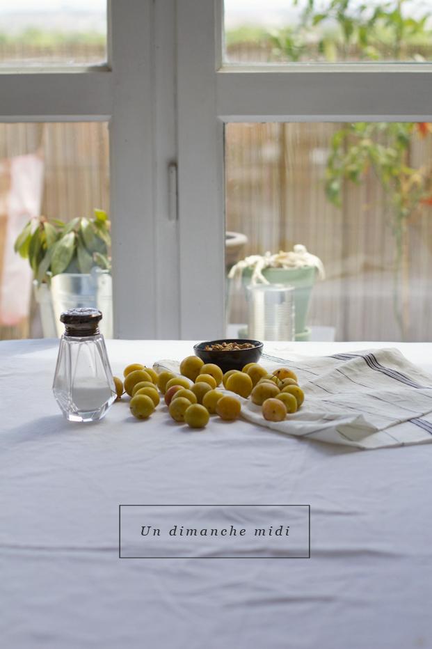 Besly Recette Tartelettes Aux Mirabelles
